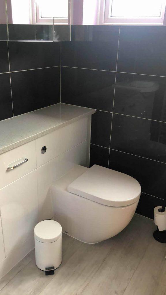 Compact WC Unit in Bathroom