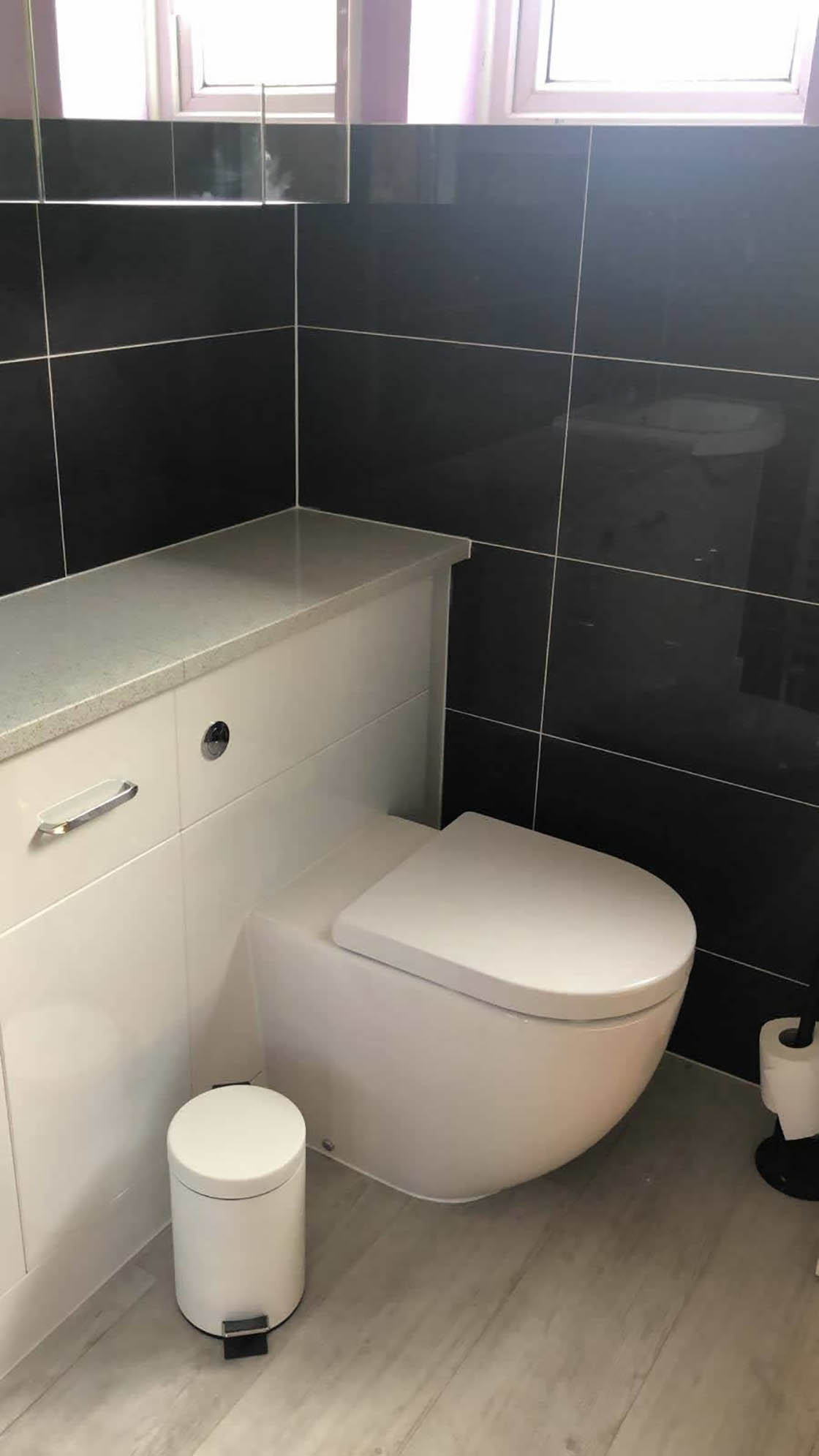 Compact WC Unit in Bathroom